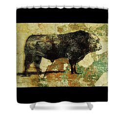 Shower Curtain featuring the drawing French Limousine Bull 11 by Larry Campbell