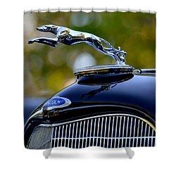 Lincoln Shower Curtain by Dean Ferreira