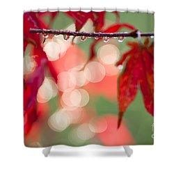 Line Of Reflections Shower Curtain by Anne Gilbert