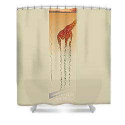 Lines Of Solitude 5 Shower Curtain by David Roe