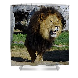 Lion 2 Shower Curtain