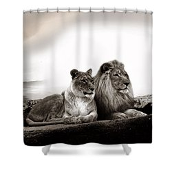 Lion Couple In Sunset Shower Curtain
