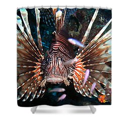 Shower Curtain featuring the photograph Lion Fish - En Garde by Amy McDaniel