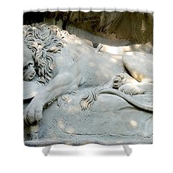 Lion Monument In Lucerne Switzerland Shower Curtain