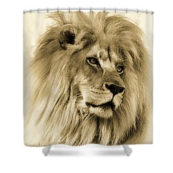 Lion Shower Curtain by Swank Photography