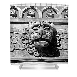 Lions Head Shower Curtain by Carsten Reisinger