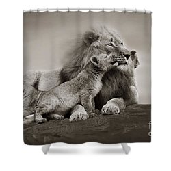 Shower Curtain featuring the photograph Lions In Freedom by Christine Sponchia