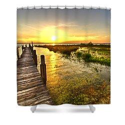 Liquid Gold Shower Curtain by Debra and Dave Vanderlaan