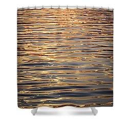Liquid Gold Shower Curtain by Elena Elisseeva