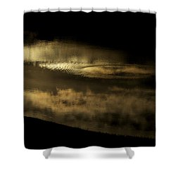 Shower Curtain featuring the photograph Liquid Gold by Jane Eleanor Nicholas