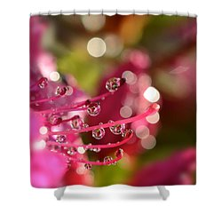 Liquid Light Shower Curtain by Lisa Knechtel