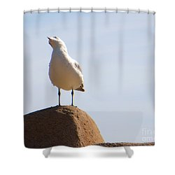 Listen-up Shower Curtain