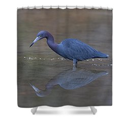 Little Blue Bubbles Shower Curtain