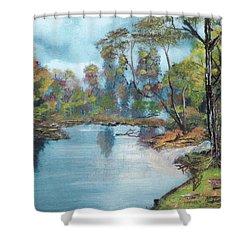 Little Brook Shower Curtain