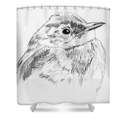 Little Buddy Shower Curtain