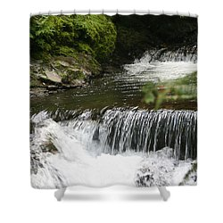 Little Creek Falls Shower Curtain