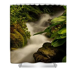 Shower Curtain featuring the photograph Little Creek by Sabine Edrissi
