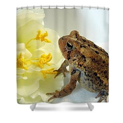 Little Dreamer Shower Curtain by Renee Trenholm
