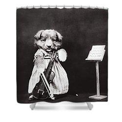 Little Fiddler Shower Curtain by Aged Pixel