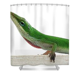 Little Green Shower Curtain by Sally Simon