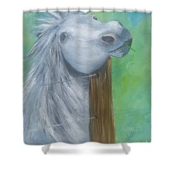 Shower Curtain featuring the painting Little Grey Has An Itch by Isabella F Abbie Shores FRSA