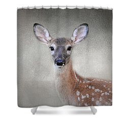 Little Miss Lashes - White Tailed Deer - Fawn Shower Curtain