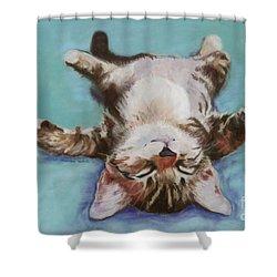 Little Napper  Shower Curtain