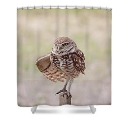 Little One Shower Curtain by Kim Hojnacki