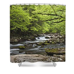 Little River Respite Shower Curtain