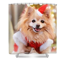 Little Santa Claus Shower Curtain
