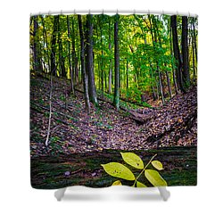 Little Valley Shower Curtain