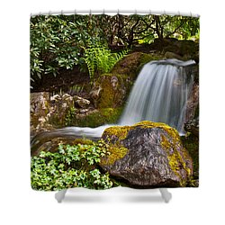 Little Water Fall Shower Curtain by Sabine Edrissi