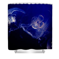 Live Water Shower Curtain by Paul W Faust -  Impressions of Light