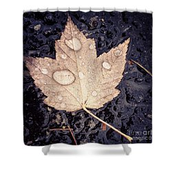 Live With Intention  Shower Curtain by Kerri Farley