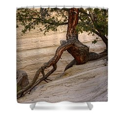 Living Gracefully Shower Curtain by Bob Christopher