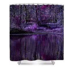 Living In A Purple Dream Shower Curtain by Linda Unger