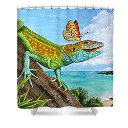 Lizard Landing Shower Curtain by Carolyn Steele