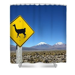 Llamas Crossing Sign Shower Curtain by James Brunker