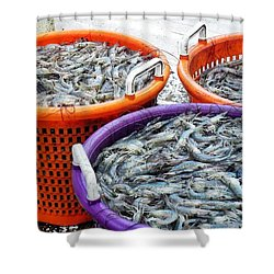 Loaves And Fishes Shower Curtain by Patricia Greer