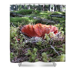 Lobster Mushroom Shower Curtain
