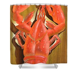 Lobster On A Plank Shower Curtain