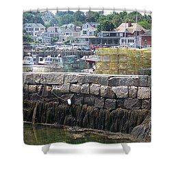 Shower Curtain featuring the photograph New England Lobster by Eunice Miller