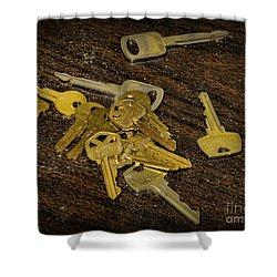 Locksmith - Rejected Keys Shower Curtain by Paul Ward