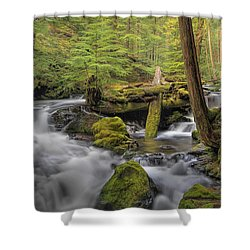 Log Jam Shower Curtain by David Gn