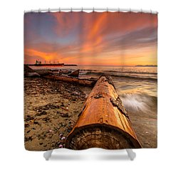 Login To Nature Shower Curtain by Eti Reid