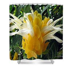 Lolliepop Plant Shower Curtain