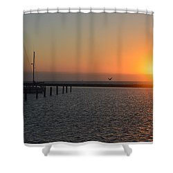 Lone Bird At The Marina Shower Curtain