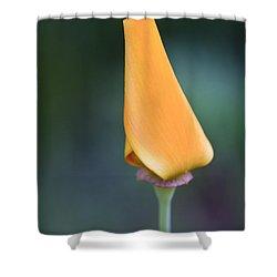 Lone Bud Shower Curtain by Adam Romanowicz