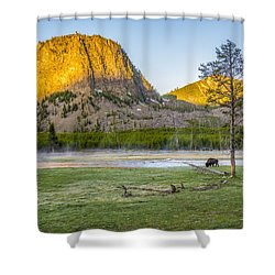 Lone Buffalo Yellowstone National Park Shower Curtain