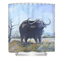 Shower Curtain featuring the painting Lone Bull by Anthony Mwangi